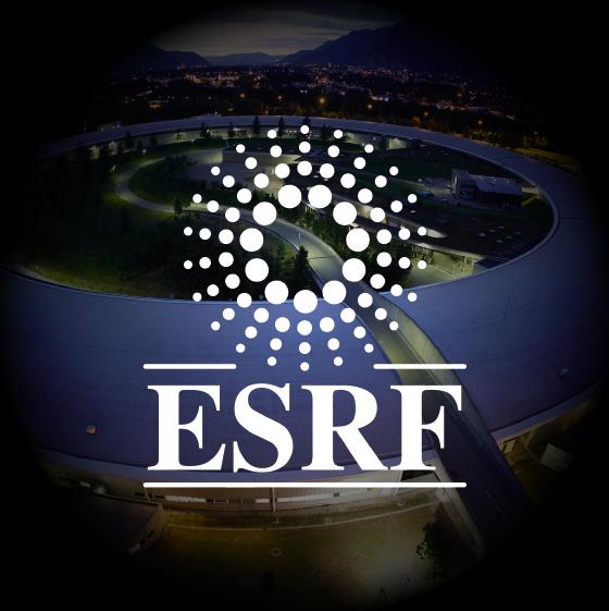 ESRF Case Study Logo